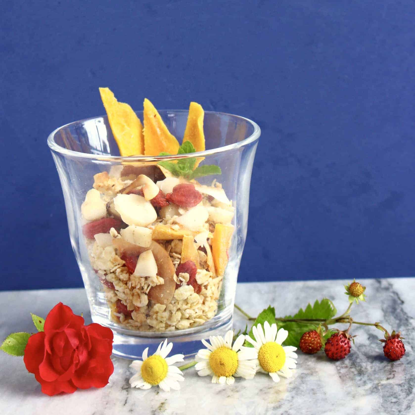 Tropical Granola (Vegan + GF)
