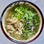 Shirataki Noodle Ramen (Vegan + GF)