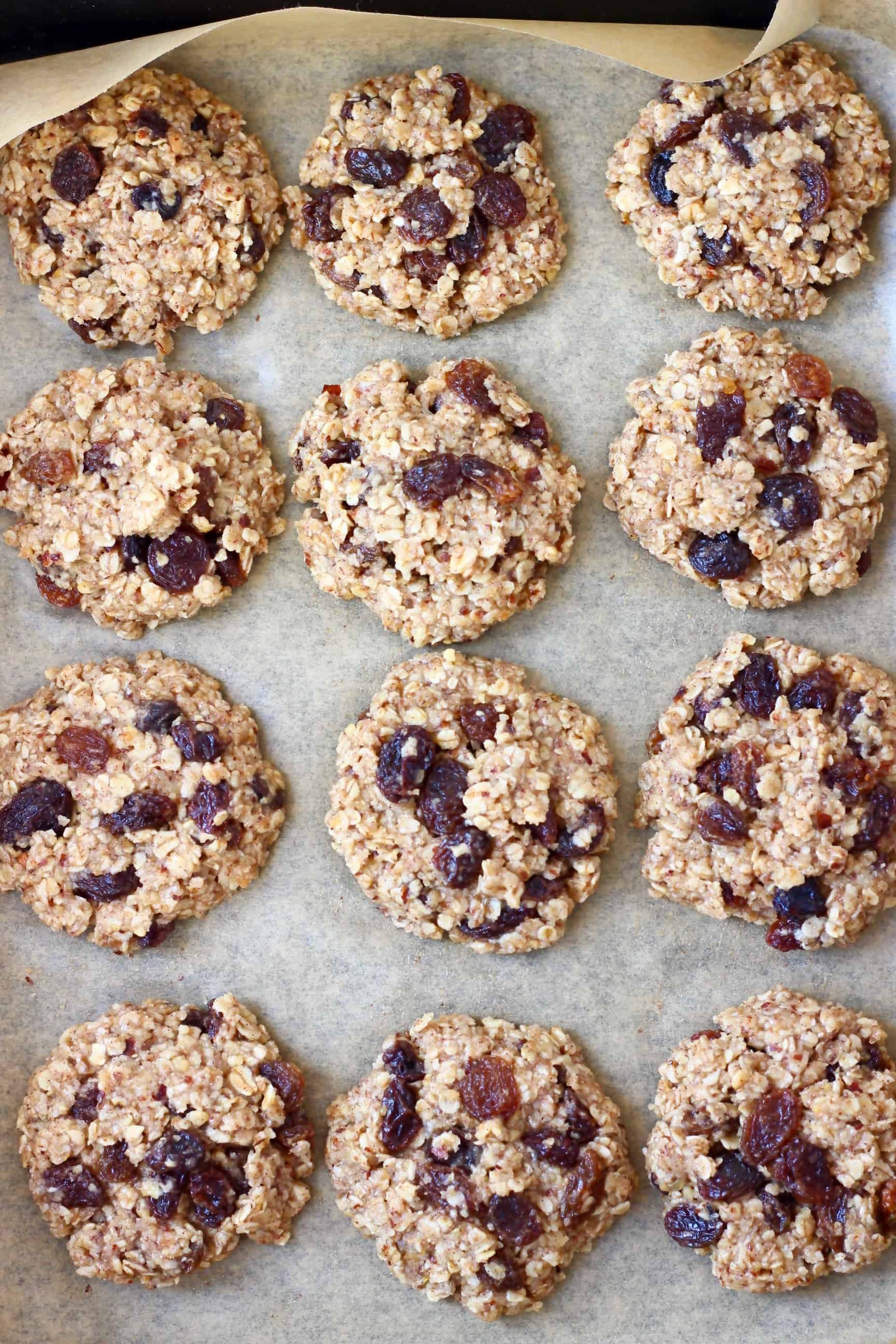 Twelve raw gluten-free vegan oatmeal raisin cookies on a baking tray lined with baking paper