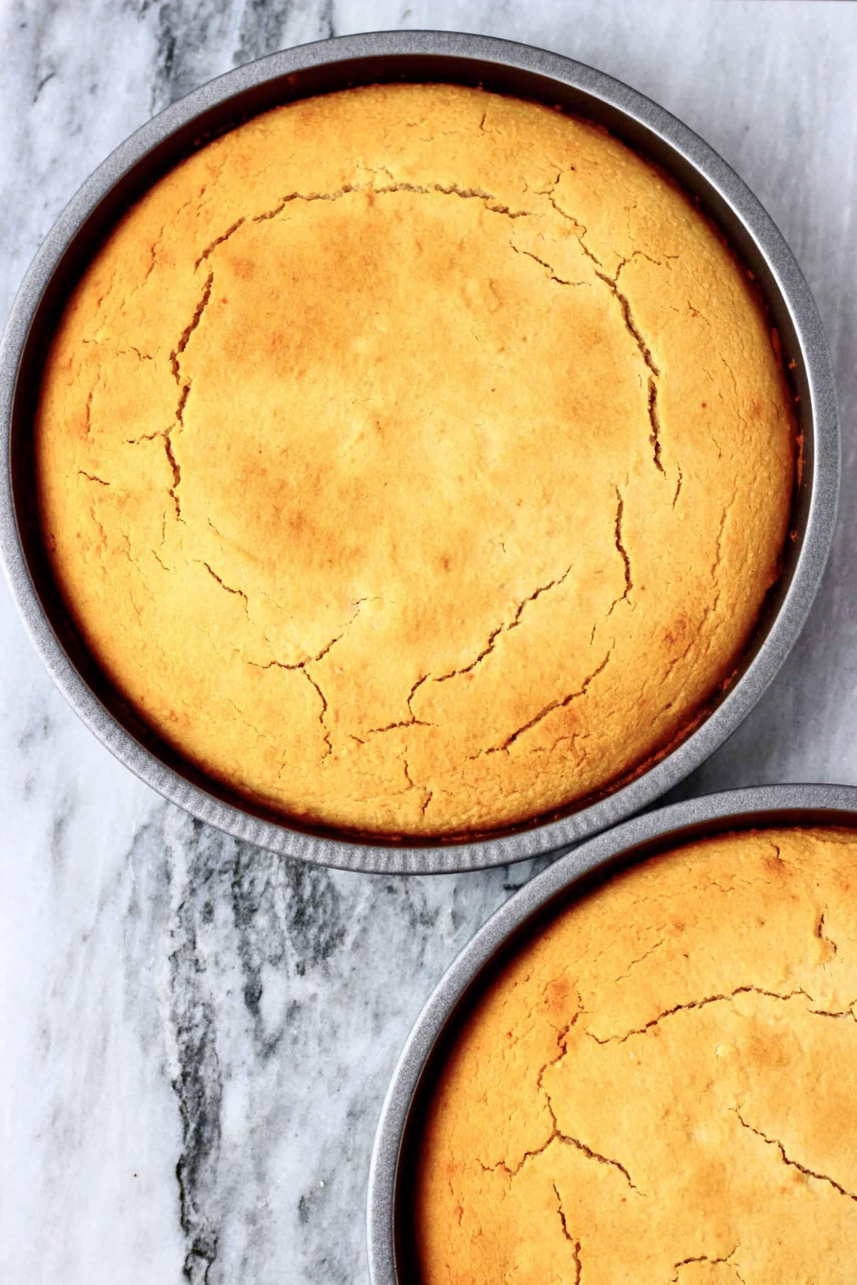 Two gluten-free vegan Victoria sponge cake sponges in two circular baking tins