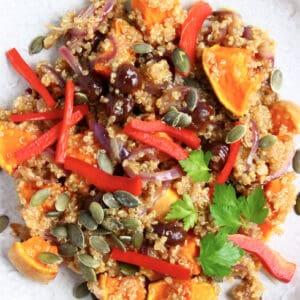 Pumpkin quinoa salad with red onion, roasted pumpkin and pumpkin seeds on plate