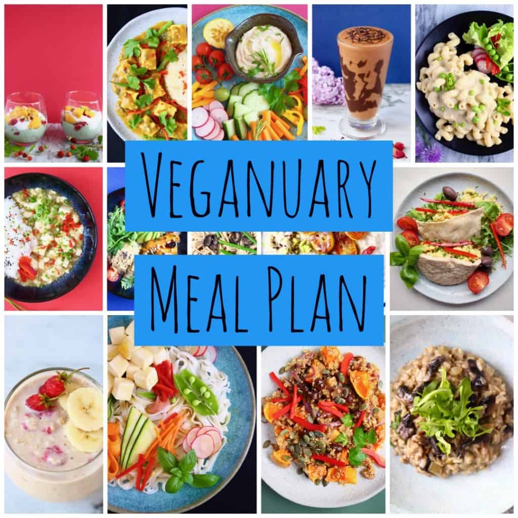Collage of pictures from the veganuary meal plan ebook