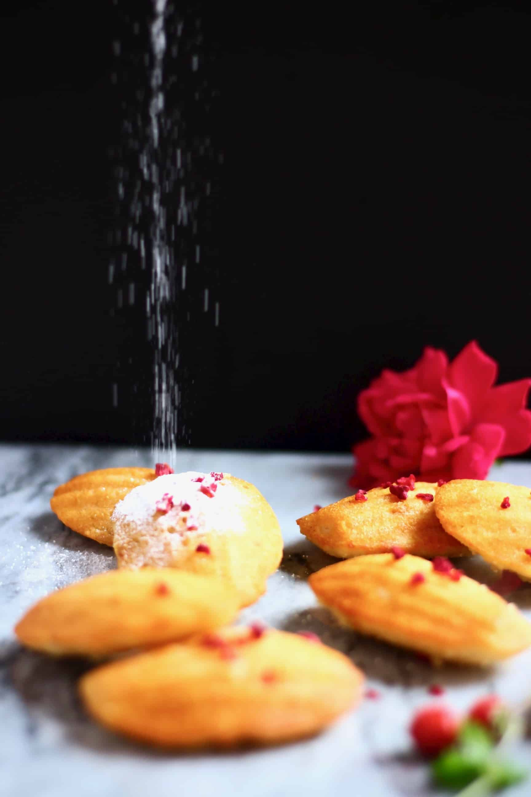 Seven madeleines on a marble surface against a black background with icing sugar being sprinkled over