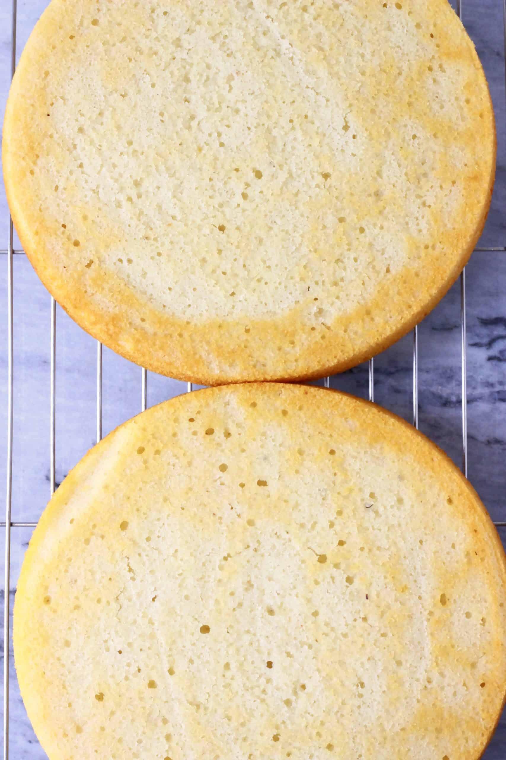 Two round gluten-free vegan vanilla cake sponges on a wire rack