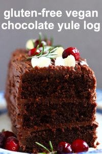 A slice chocolate yule log with three layers topped with cranberries
