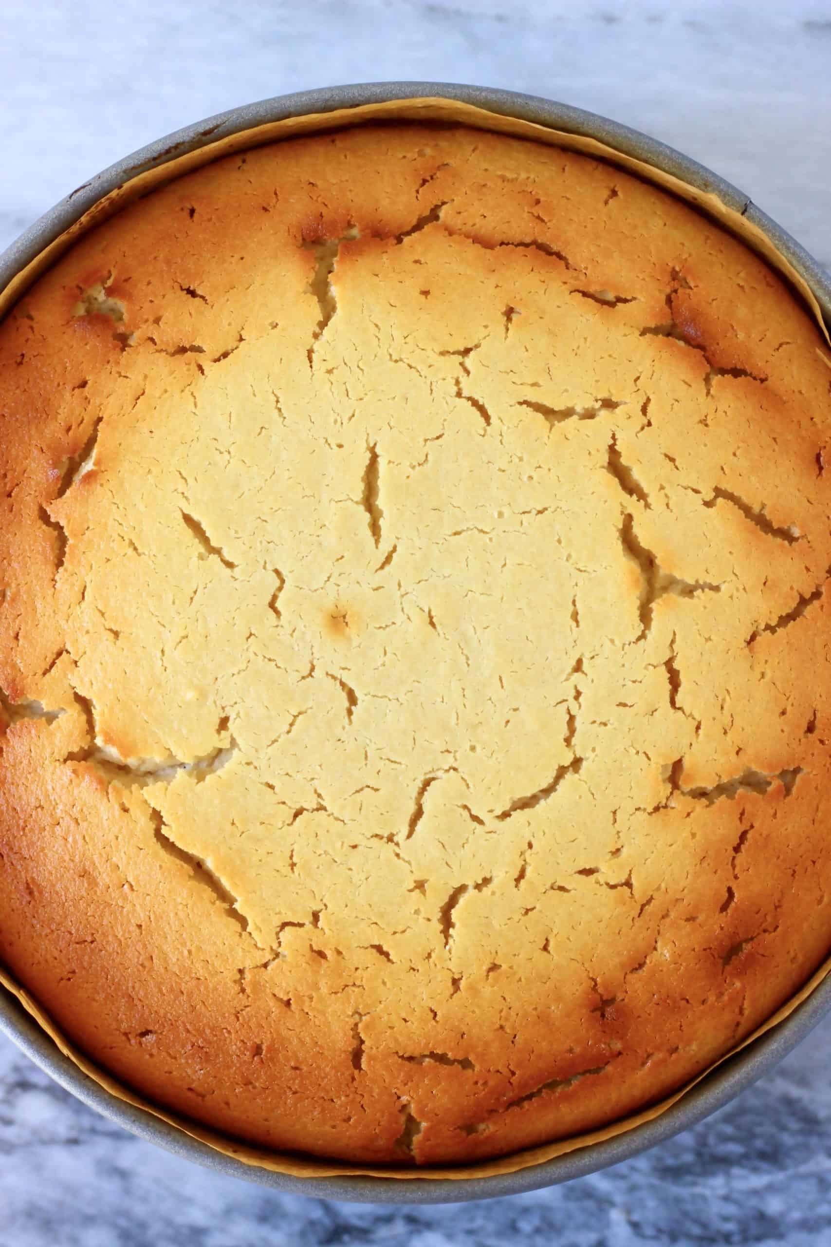 Golden brown vegan baked cheesecake in a springform baking tin